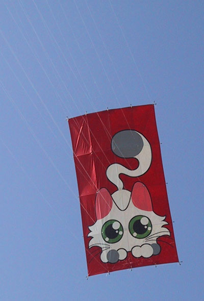 Our first Edo kite, 17 lines, what a nightmare...